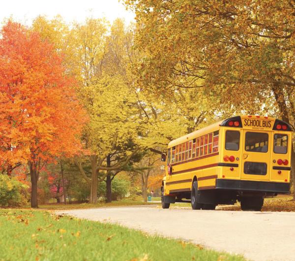 Image 5.1 Schools